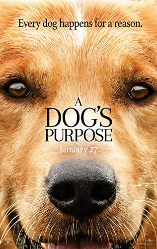 newhorizon A Dogs Purpose Movie Poster 16'' x 25'' NOT A DVD