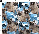 Spoonflower Fabric - French Bulldog Animals Dogs Puppies Pawprint Flowers Printed on Petal Signature Cotton Fabric by The Yard - Sewing Quilting Apparel Crafts Decor
