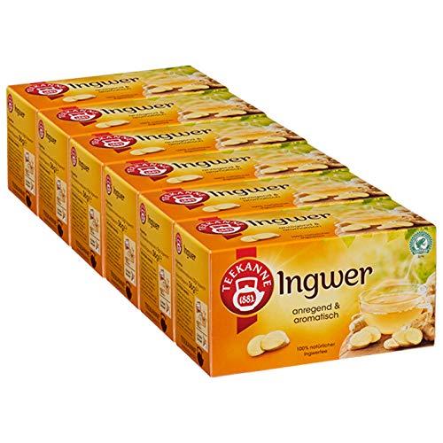 Teekanne -  Ingwer 6er Pack