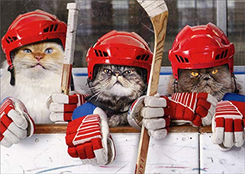 Hockey Cats - Avanti Funny / Humorous Birthday Card