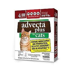 commercial Advecta Plus Nomis Squeeze Big Cat 4 months worth advecta 3