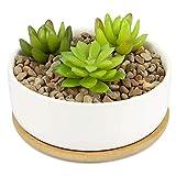 Pot à plantes en céramique et base en bambou | Jardinière succulente d'intérieur...