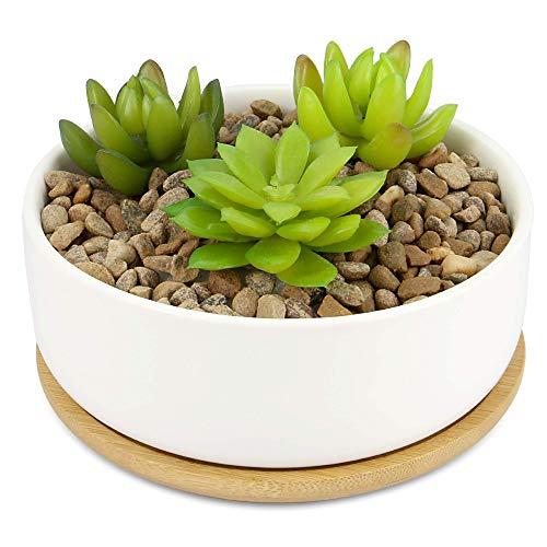 Keramiktopf & Bambussockel | Sukkulente Pflanzgefäße für den Innen- und Außenbereich | Kakteen & kleine Hauspflanze Weiße Töpfe | M&W (Runden)