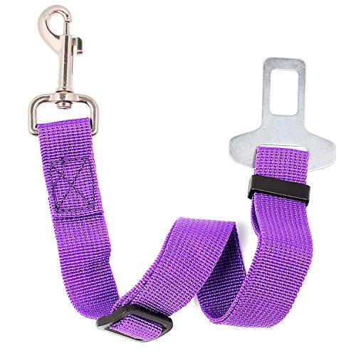 Neuftech Cane Cintura di Sicurezza Auto Regolabile per Cani Guinzaglio 60 cm Purple