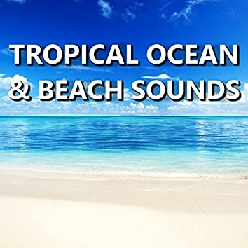 Tropical Ocean & Beach Sounds