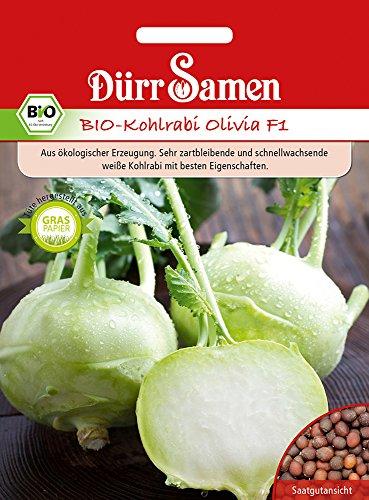 Dürr-Samen Kohlrabi Olivia F1