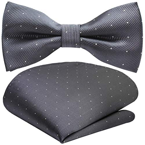 GASSANI 2Tlg Fliegenset, Festliche Dunkel-Graue Herren-Fliege Silber Gepunktet, Hochzeitsfliege Anzug-Schleife Vor-Gebunden Ein-Stecktuch Pünktchen