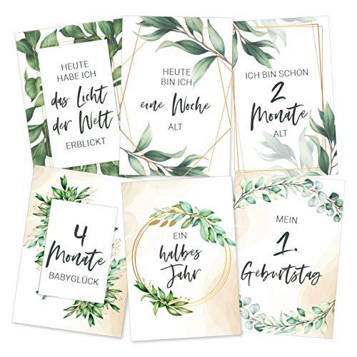Premium Baby Meilenstein-Karten fürs erste Lebensjahr - (Sprache Deutsch) - Meilensteinkarten - Geschenk zur Geburt, Babyparty, Schwangerschaft (Unisex)