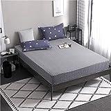 GTWOZNB Funda de colchón Anti chinches, Transpirable, Sábana Simple de algodón Aloe-25_180 * 220cm