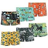 Flyish Coton Boxer Garçon Lot de 6 Enfant Slip Garcon Dinosaure Culotte sous-Vêtement ,8-9 ans,Multicolore,X-Large