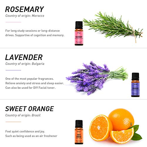 Natrogix Bliss Esssential Oils 9 Pack 10ml Therapeutic Grade 100% Pure Natural Aromatherapy Essential Oil Set Essential Oils for Diffuser Humidifier Massage Hair Skin Care