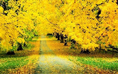 Pintar por números para Adultos Pintura para Pintar por números con Pinceles y Colores Brillantes Cuadro de Lienzo con numeros pre Dibujado fácilOtoño de ensueño hojas de arce amarillo dorado -40x50cm