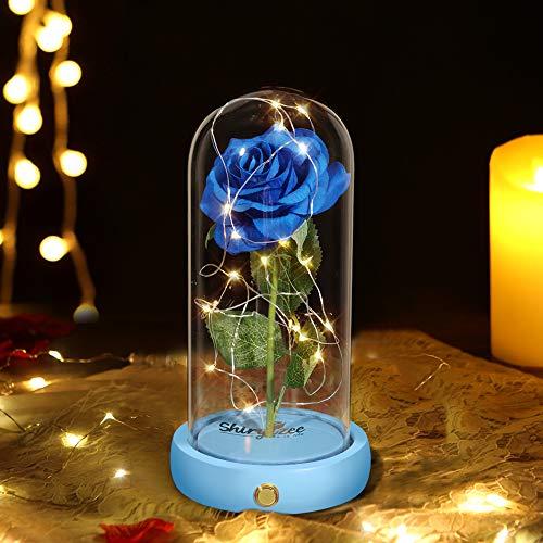 shirylzee Rosa Eterna Kit La Bella e La Bestia Rose Cupola di Vetro con Base Pino Luci LED Lampada Regali Magici Decorazioni per Natale Anniversario Matrimonio Festa della(Blu) …