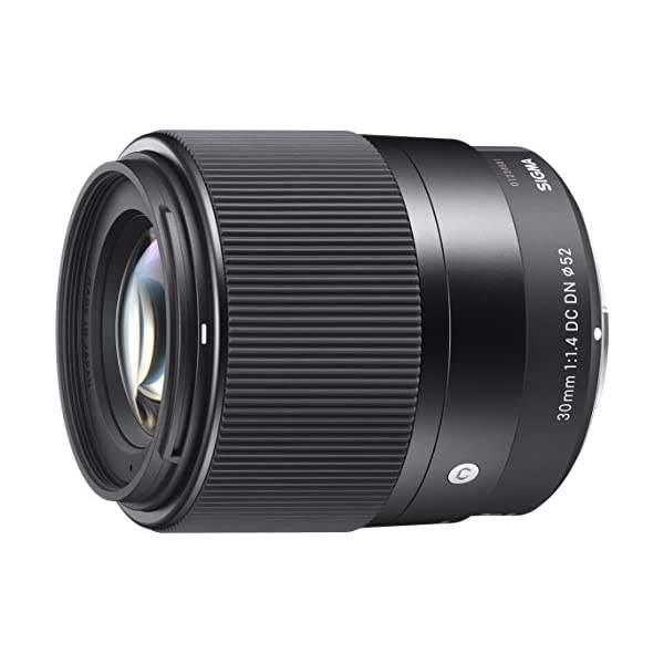 RetinaPix Sigma 30 mm f/1.4 DC DN Contemporary Lens for Sony E-Mount Mirrorless Cameras(APS-C Format)