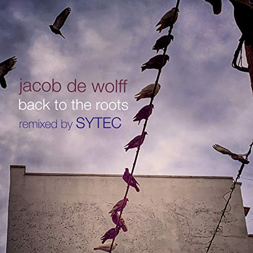 Back To The Roots (Sytec Remix)