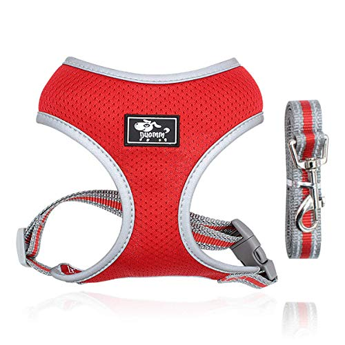 Puppy Harness and Leash Set - Dog Vest Harness for Small Dogs Medium Dogs- Adjustable Reflective Step in Harness for Dogs - Soft Mesh Comfort Fit No Pull No Choke (XS, Red)