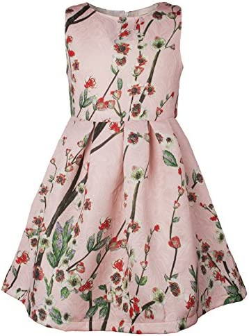 Ipuang Little Girls Lovely Flower Pattern Dresses for Special Occasions 8 Light Pink product image