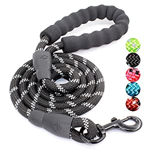 """BAAPET 5 FT Strong Dog Leash with Comfortable Padded Handle and Highly Reflective Threads for Small Medium and Large Dogs (1/2"""", Black)"""