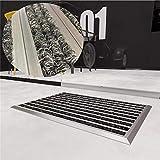 WEST&EAST Schmutzfangmatte Grau 40 x 60 cm Aluminium Fußabtreter Sauberlaufmatte...