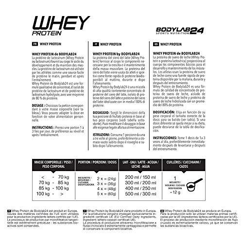 Bodylab24 Whey Protein Haselnuss-Schokolade 2000g mit Messlöffel - 3