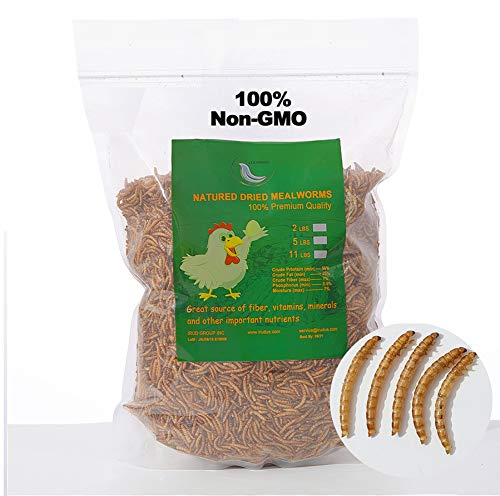 WORKPOINT 5LB 100% Natural Non-GMO High Protein Dried Mealworms, Large Size No Moisture, Perfect for Chickens Birds Hedgehog Hamster Fish Reptile Turtles