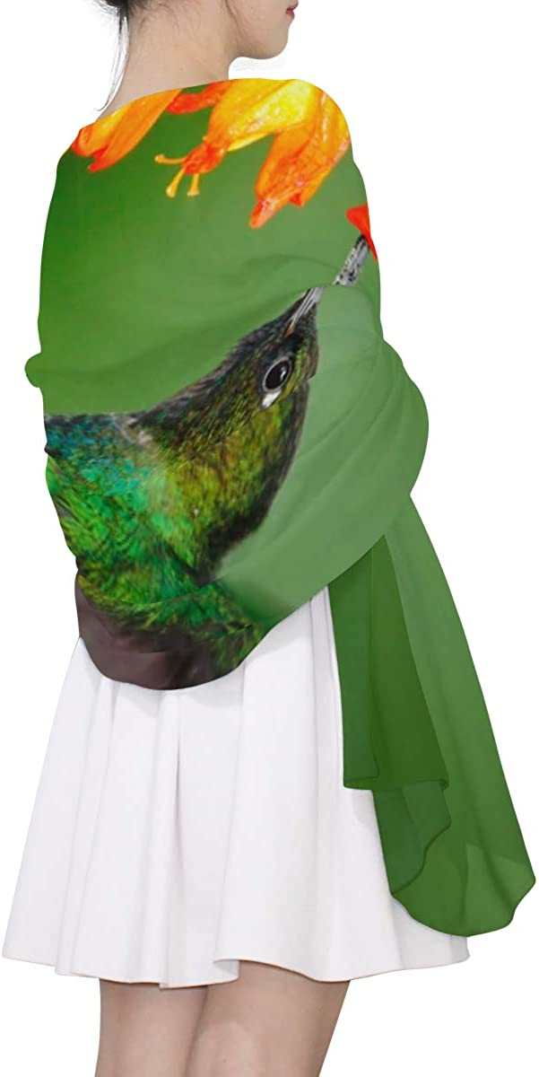 Hummingbirds Are Sucking Nectar Unique Fashion Scarf For Women Lightweight Fashion Fall Winter Print Scarves Shawl Wraps Gifts For Early Spring