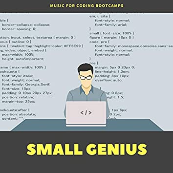 Small Genius: Music for Coding Bootcamps, Relaxation Ambient Sounds for Homework