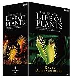 BBCドキュメント100シリーズ プライベート・ライフ・オブ・プランツ/植物の世界 DVD-BOX