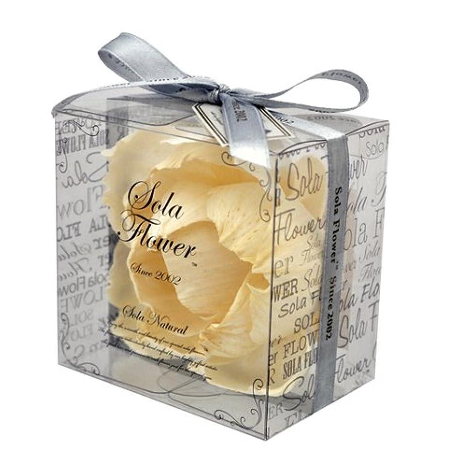 まどろみのあるパンフレットくしゃくしゃnew Sola Flower ソラフラワー ナチュラル Elegant Peony エレガントピオニー Natural
