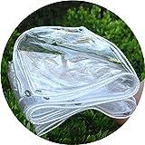 WHAIYAO PVC Lona Transparente Resistente Vidrio Suave Balcón Tela Impermeable Cubierta Aislamiento Vegetal, Tamaño Personalización De Soporte (Color : Clear, Size : 1.2x3m)