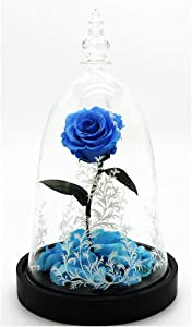 YYGU Eternal Rose Flower Led Light, Enchanted Rose with Glass Dome, Preserved Rose Wooden Base, for Valentines Day Mothers Day Anniversary Birthday Wedding,Blue Rose