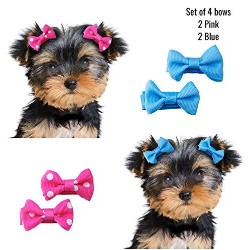 Dog Cat Pet Hair Clip Crystal Flower 2 pcs Small Yorkie Maltese Pomeranian band