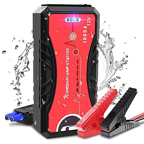 NWOUIIAY Avviatore di Emergenza Avviatore Batteria Auto 1000A 13200mAh 12V Avviatore Portatile per Auto con Led Luce per Motori Diesel 5.0L e Benzina 6.0L Porta USB QC 3.0 & Type C