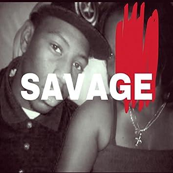 Savage (feat. Jay Hayden & DJ Luke Nasty)