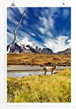 Eau Zone Home Bild - Landschaft Natur – Torres Del Paine