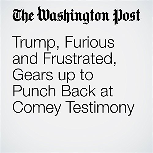 Trump, Furious and Frustrated, Gears up to Punch Back at Comey Testimony audiobook cover art