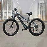 Leifeng Tower Bicicletas eléctricas de alta velocidad de 26 pulgadas, 36 V 350 W sin escobillas de aleación de aluminio Bicicletas 27 velocidad LCD pantalla bici al aire libre Ciclismo