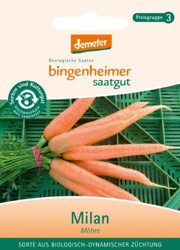 Bingenheimer Saatgut - Möhre Milan - Gemüse Saatgut / Samen