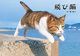 [五十嵐健太]の飛び猫 (角川マガジンズ)