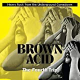 Brown Acid: the Fourth Trip [VINYL] [Vinilo]