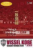 Soccer - Vissel Kobe Season Review 2014 Icchi Danketsu [Japan DVD] DSSV-170