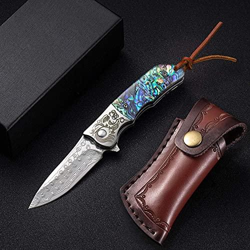 NedFoss Damast Taschenmesser Klappmesser Damaststahl Messer Outdoor Damastmesser, 7cm Klinge (Farbiges Harz)