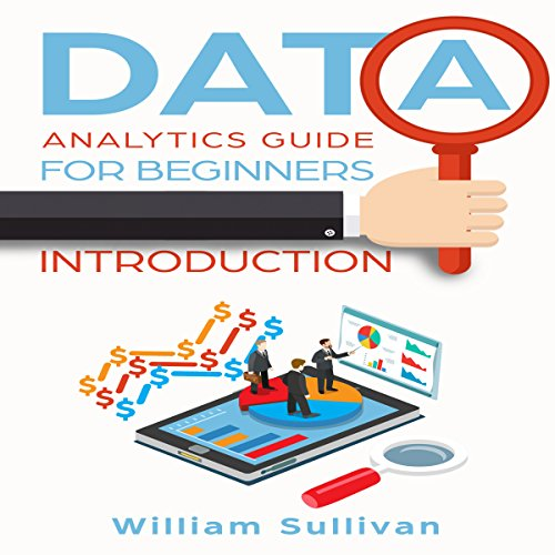 Data Analytics Guide for Beginners: Introduction audiobook cover art
