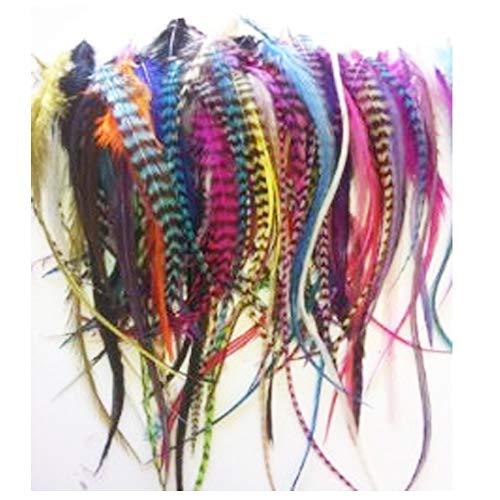 SEXY SPARKLES 100 Federn für Haarverlängerungen, echte Regenbogenfarben, gemischte echte Grizzly und solide, 10,2 - 15,2 cm in der Länge, plus (20) 5 mm Mikroperlen