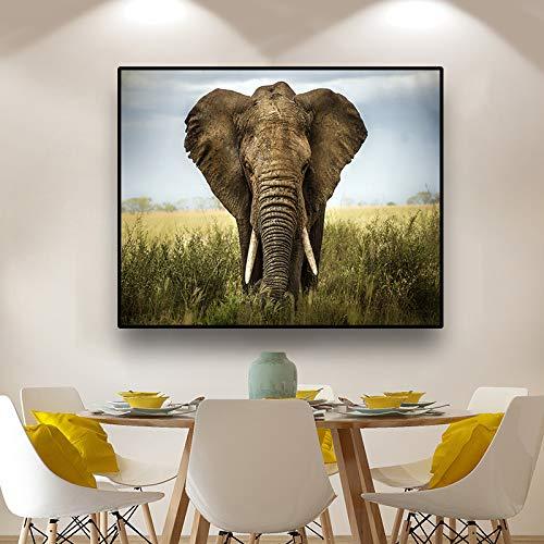 ganlanshu Cartel del Arte de la Lona Pintura del Elefante en la Hierba decoración Creativa de la Pared Pintura decoración del hogar,Pintura sin Marco,70x90cm