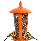 Mangiatoia per uccelli selvatici Attrae più uccelli, perfetta per la...