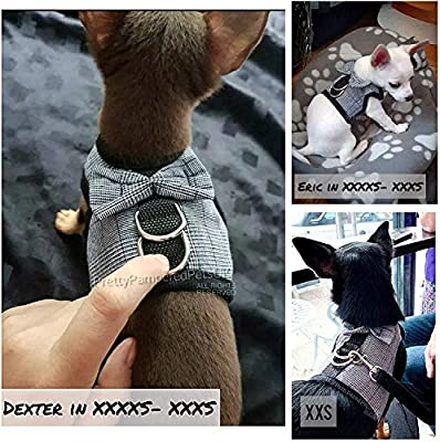 Chihuahua Harness Tiny Size XXXXS XXXS Size Puppy Dog Harness TINY PUPPY DOG Chihuahua Teacup Kitten PUPPY DOG COAT tiny clothing clothes also sell xxs xs s (XXXXS- XXXS- Colour as shown)