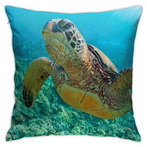 Cup Off Funda de Almohada Verde Maui Sea Turtle sobre arrecifes de Coral en Hawaii Snorkel Swim Underwater Square Funda de Almohada para sofá, Dormitorio, Coche