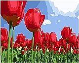 MYQF Cuadros para Pintar por Numeros Adultos,Flor de tulipán Rojo DIY Pintura por Lienzos para Pintar por Número De Kits Al Óleo Pintar con Pinceles y Pigmento acrílico,Regalo de cumpleaños,50x40 cm
