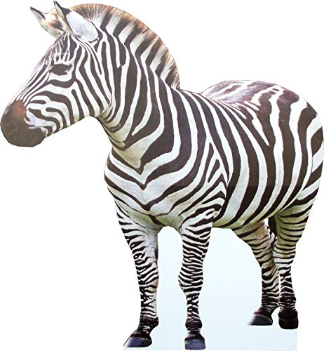 aahs!! Engraving Animal Life Size Cardboard Cutout Stand Up | Standee Picture Poster Photo Print (Zebra)